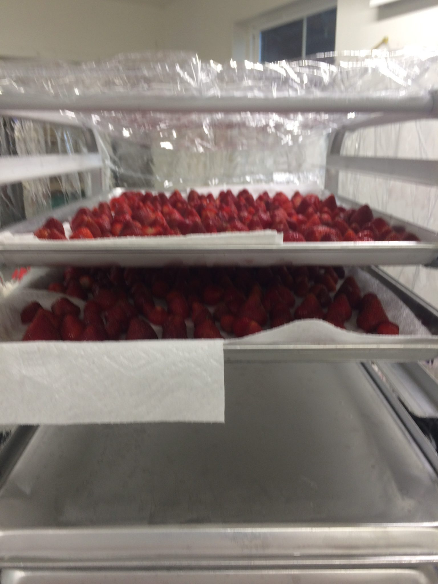 strawberries on trays